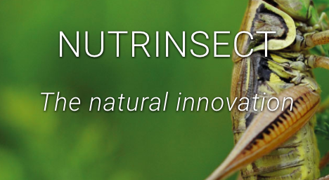 Nutriinsect Picture