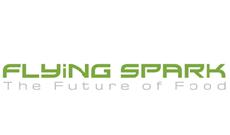 Logo Flying Spark