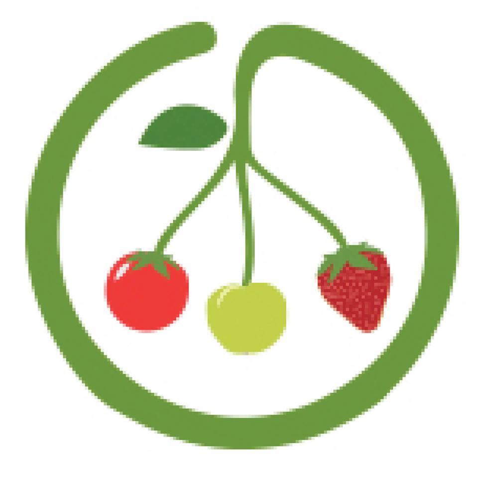 Logo Ocibok'elles